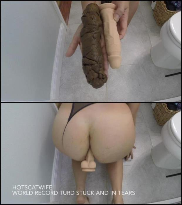 Woman defecates very large hard turd – this world record. - Special #582 [FullHD 1080p] - 1.09 GB