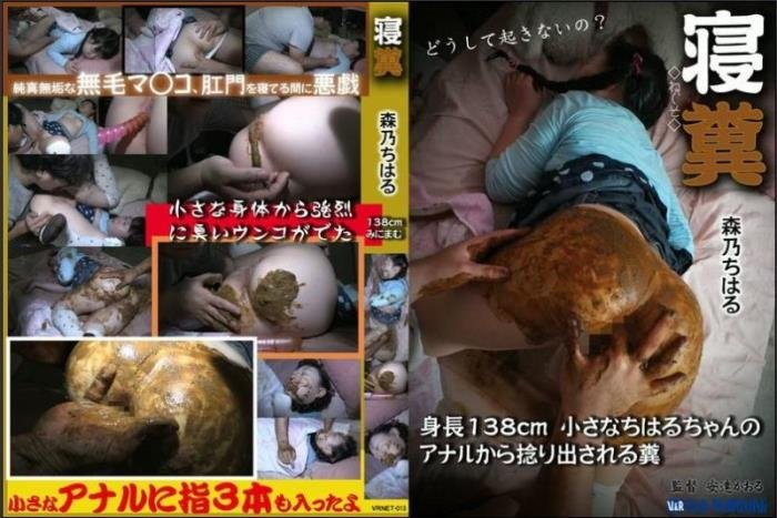 Sleeping girls defecation and anal masturbation. - VRNET-013 [SD] - 1.62 GB